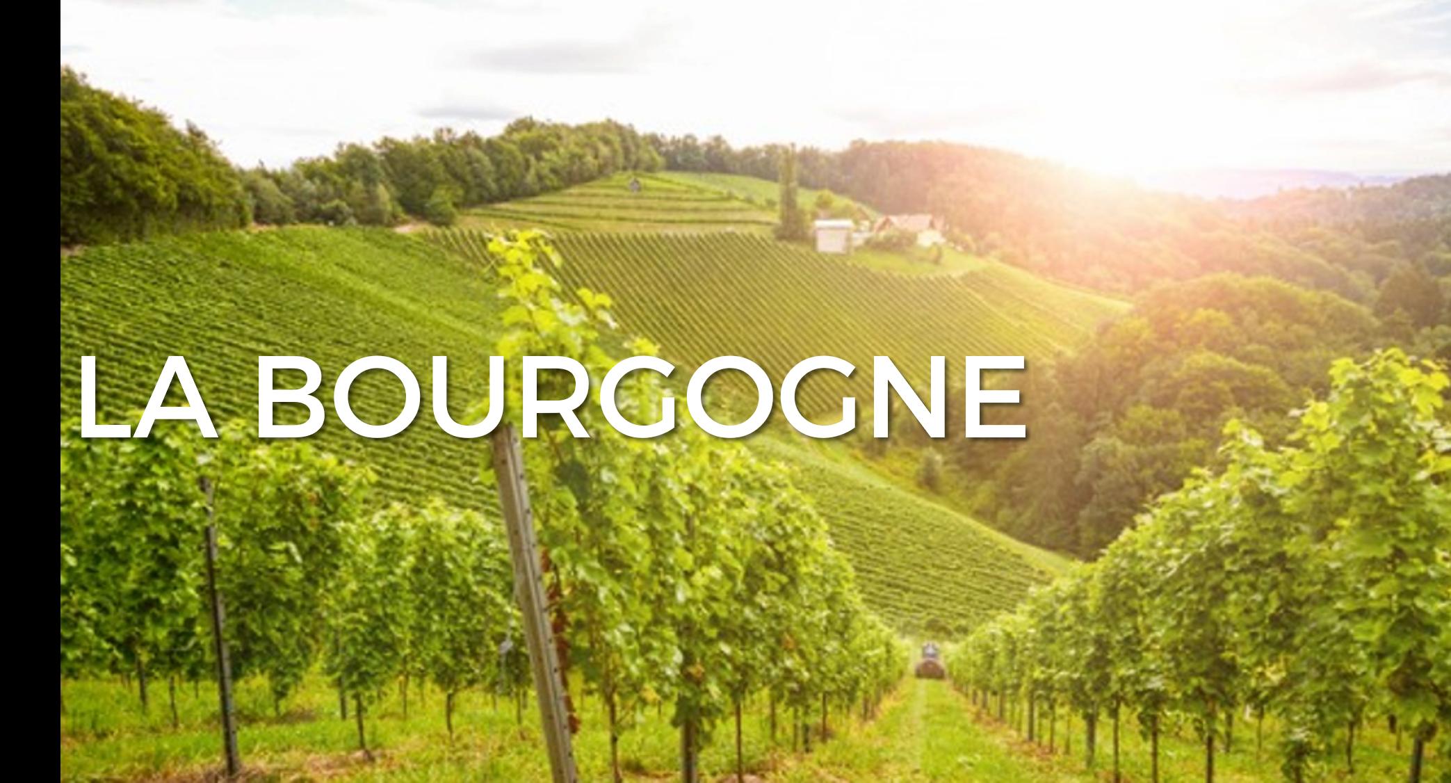 bourgogne-criture1